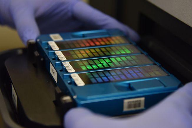 技術人員正掃描DNA陣列。(Getty Images)