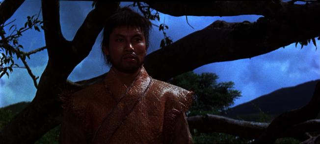 岳華在大醉俠的演出。(取材自豆瓣電影)