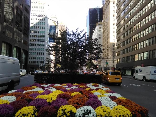 曼哈頓公園大道被稱為「億萬富翁大道」。(韓傑/攝影)
