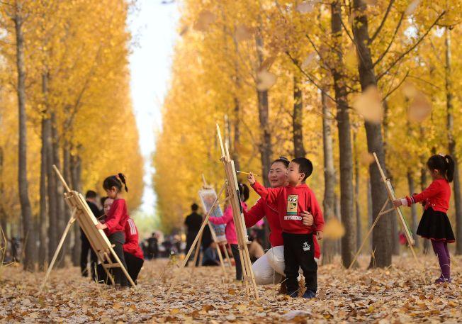 河北沧州职教中心幼儿园的孩子到大运河森林生态园内赏秋写生,用手中的画笔留住自然美景。(新华社)