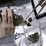 4州公投大麻合法化 密西根、密蘇里和猶他3州通過