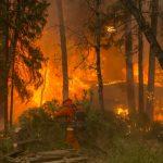 北加天堂市山火 暴增至42死  加州最高最慘紀錄