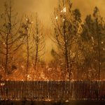「我以為死定了」 醫護搶救病患 穿越火燄逃命九死一生