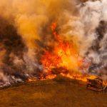 山火邁入第五天 只控制30%
