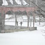 東北風暴來襲 東岸迎今冬第一波瑞雪