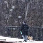 今年麻州第一場雪 今晚報到