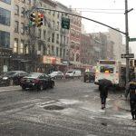 紐約今冬首場大雪   交通亂樹倒塌