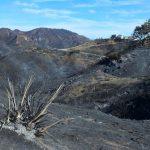 感恩節下雨 山火區憂土石流