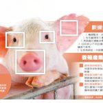 AI技術突破 動物臉部識別有錢景