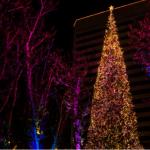 南海岸廣場 聖誕點燈