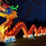 彩燈嘉年華  史泰登島開幕 超美中華風情