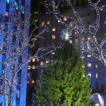 洛克菲勒中心 聖誕樹亮燈  樹齡75歲  樹高72呎