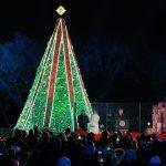 〈圖輯〉白宮迎接聖誕季 川普與第一夫人攜手點亮聖誕樹