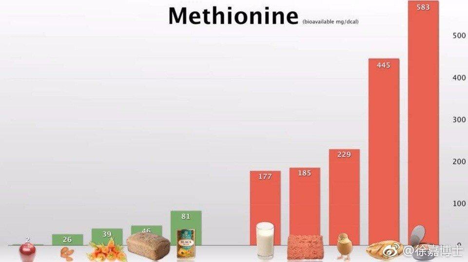 按食物的蛋氨酸含量排序,排在前300名的都是動物製品。