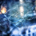 或驟降至20℉ 東北部將迎「最冷感恩節」