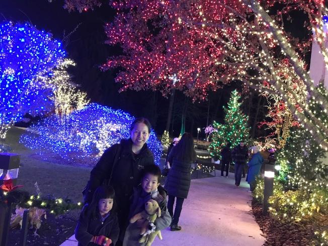 不少家庭不畏寒天,攜家帶小逛燈展園區。(特派員許惠敏/攝影)