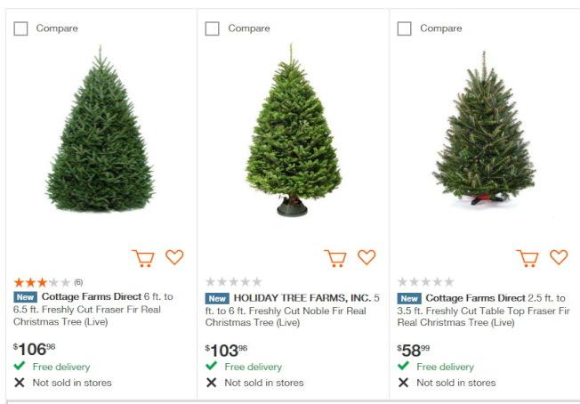 Home depot的耶誕樹掛牌價。(取自網站)