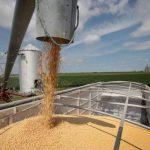 美國農業部長說中國料將再買大豆 豆農嘆晚了「都在找貸款」