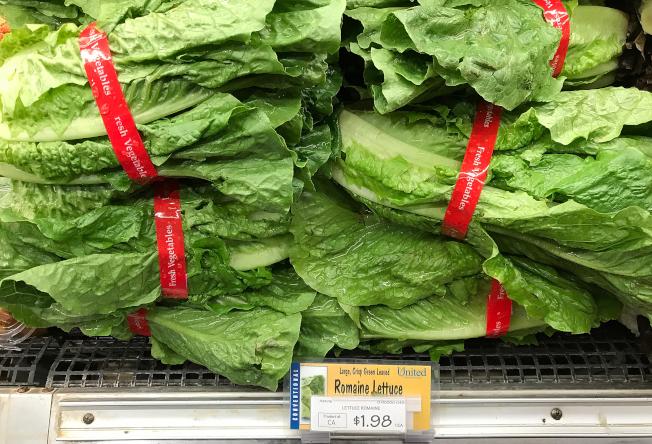 近來受污染的蘿蔓生菜並非在夏威夷生產,民眾可放心食用本地蔬菜。(Getty Images)