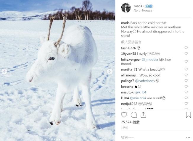 挪威攝影師諾德斯芬在Instagram分享罕見的白色馴鹿照。取自Instagram