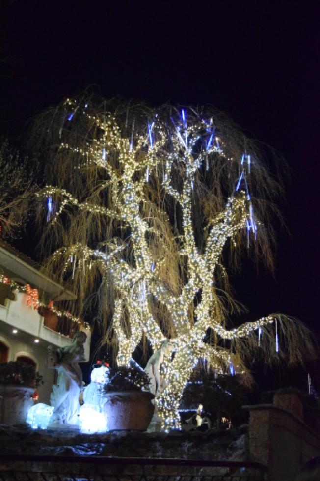 部分居民在樹上掛起燈飾,燦爛耀眼。(顏潔恩/攝影)