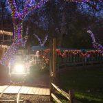 溫馨…爾灣公園鐵路公司 為耶誕火車點燈