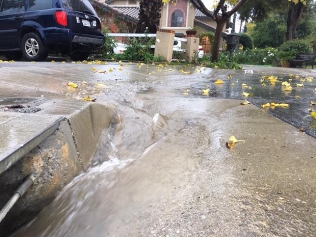 6日破紀錄的降雨,令聖蓋博谷不少華人住家的前庭後院變成澤國,水流成小河。(記者楊青/攝影)