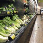 蘿蔓生菜染大腸桿菌 食用後致病再添9例
