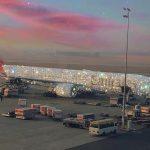阿聯酋航空推特 貼「珠光寶氣」飛機照 颳起網路旋風