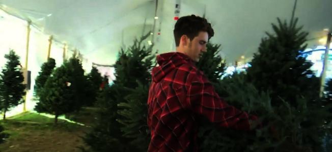新鮮耶誕樹的清香很受喜愛,獲贈耶誕樹的家庭之一。(截自視頻)