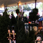 奧蘭多醫師送百棵耶誕樹 鼓勵行善 小女孩回信了