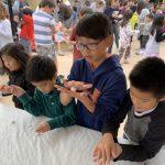 中華學苑搓湯圓 數百家長學生同樂
