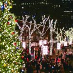 燈火璀璨 波市頓耶誕超夢幻
