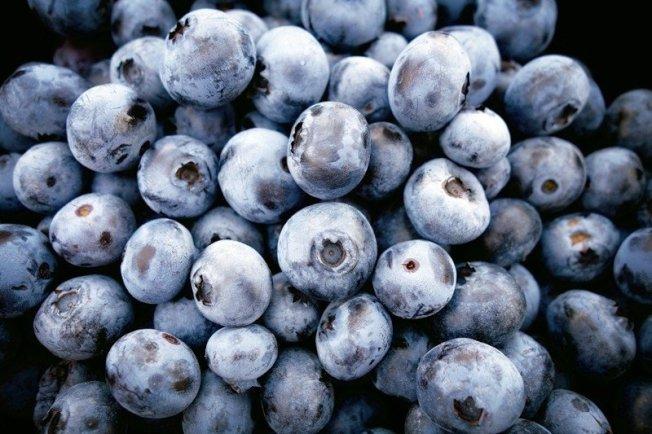 藍莓(或覆盆子與蔓越莓)含有被稱為「多酚」的抗氧化物質, 資料來源/美國《預防》雜誌