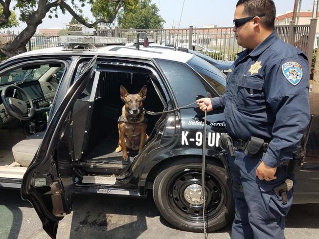 加州2019年諸多交通新法上路,公路巡警將加強取締。(CHP提供)