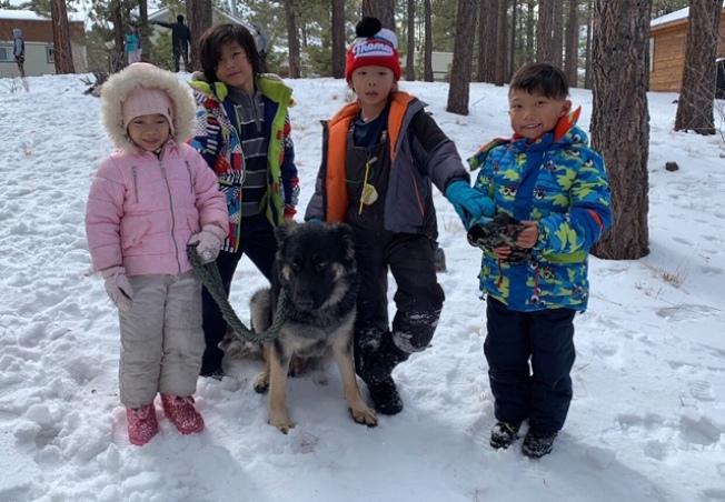 孩子们和狗狗在大熊湖区玩耍。(王恬提供)