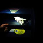 郵筒釣魚猖獗 下東城也受害