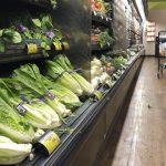 加州蘿蔓生菜引起的大腸桿菌疫情已平息