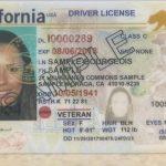 4月10日前可持加州駕照搭機