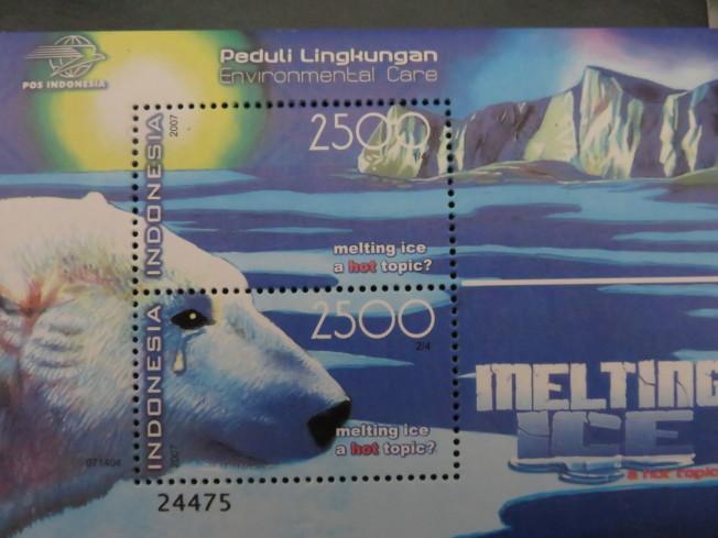 北極熊因為氣候暖化流下眼淚。