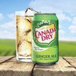 「不含薑汁」加拿大薑汁汽水廠商將賠錢給消費者