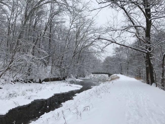大華府本周六迎接2019年第一場大雪,各地降雪量從6吋到10吋不等,馬維州交接的大瀑布國家公園早已白雪皚皚。(讀者鍾申提供)