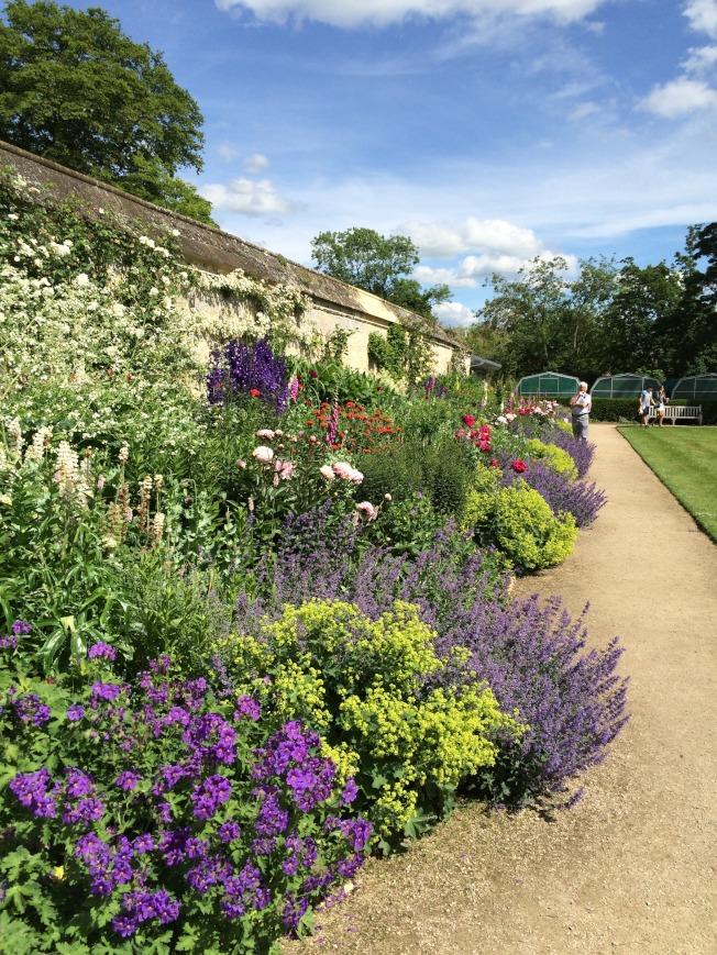 牛津大學藥草植物園。