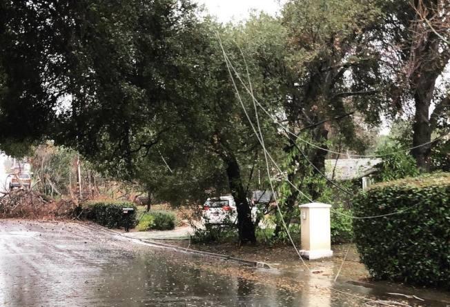 16日夜间风雨交加,南湾不少城市树木倒塌、压断电线。(图:翻摄自圣县消防局网站)