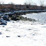 〈圖輯〉紐約迎入冬最冷 長島灣「急凍」