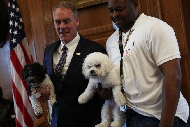 前內政部長辛基(Ryan Zinke,左)2017年5月宣導帶狗上班日。(Getty Images)