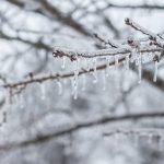 感恩節假期冬季風暴接踵襲美 交通恐受影響