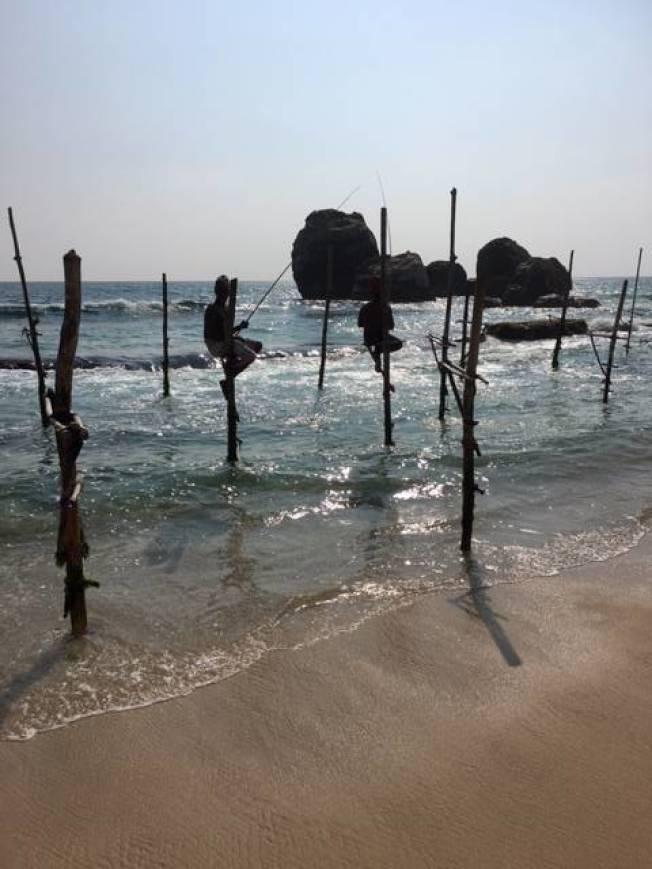 斯里蘭卡獨有的高蹺釣魚。