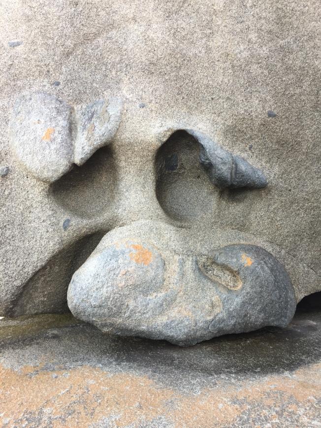 像豬頭的非凡石。