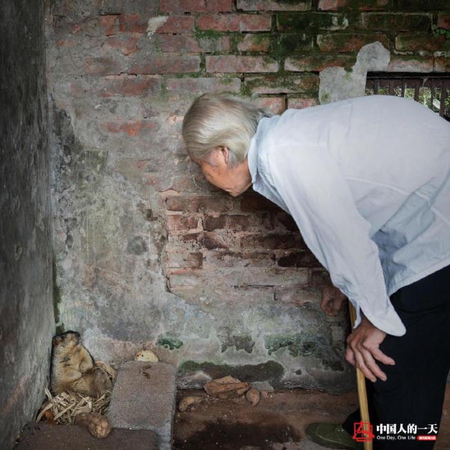 羅應玖是園長,還肩負著採購員、搬運工,清潔工、售票員、獸醫、飼養員、講解員多種職責。(取材自微信)